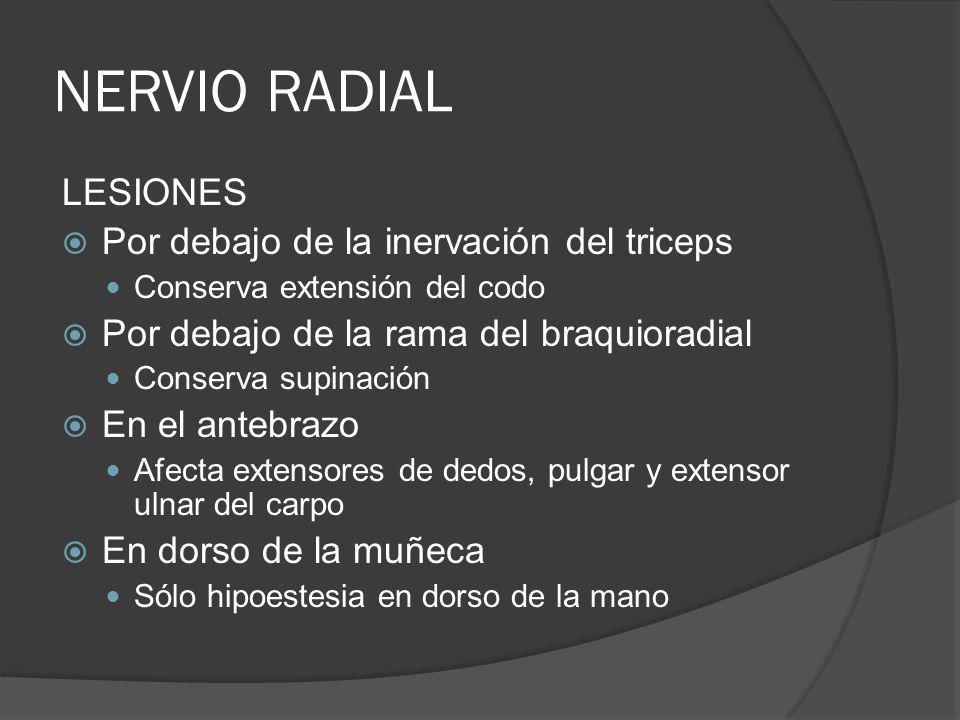NERVIO RADIAL LESIONES Por debajo de la inervación del triceps