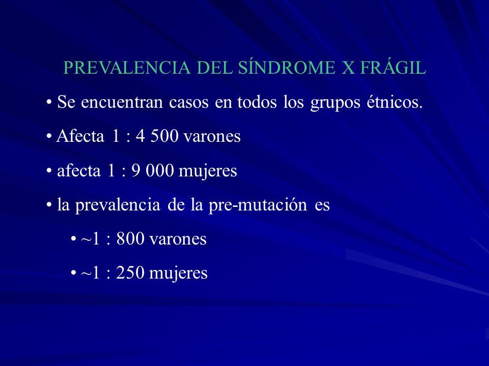 PREVALENCIA DEL SÍNDROME X FRÁGIL