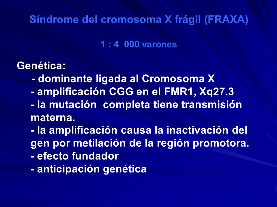 Síndrome del cromosoma X frágil (FRAXA)