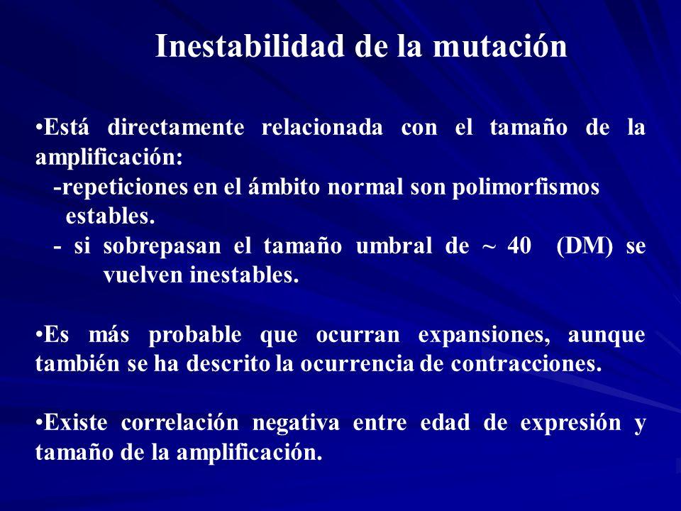 Inestabilidad de la mutación