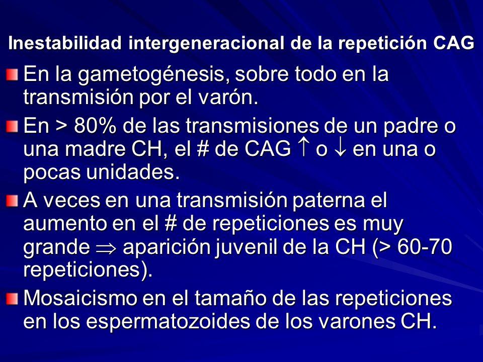Inestabilidad intergeneracional de la repetición CAG