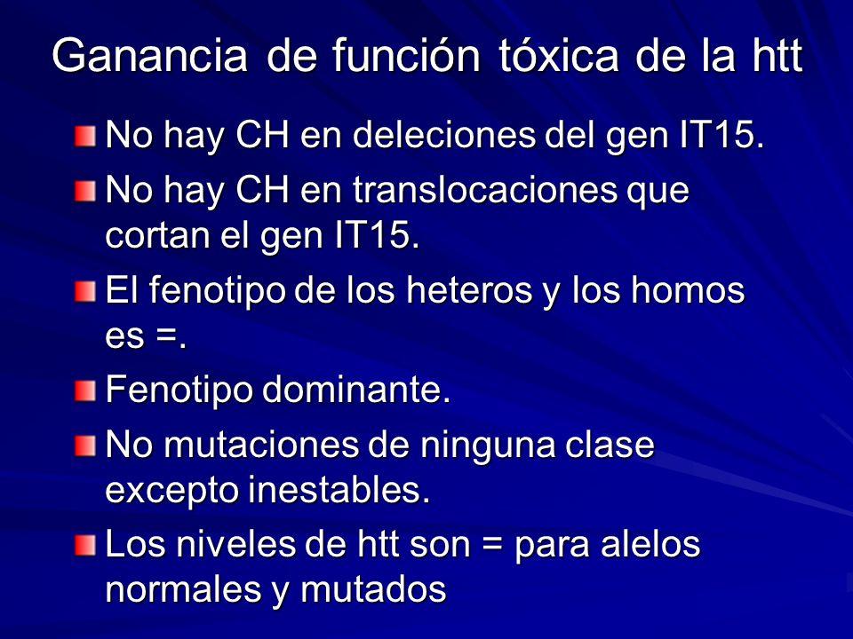 Ganancia de función tóxica de la htt
