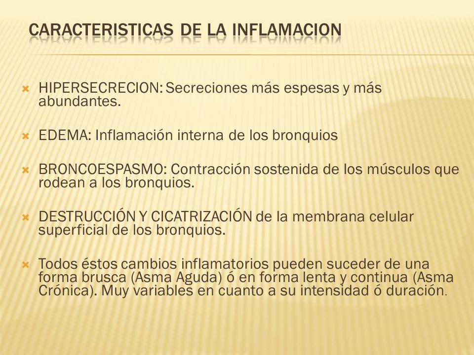 CARACTERISTICAS DE LA INFLAMACION