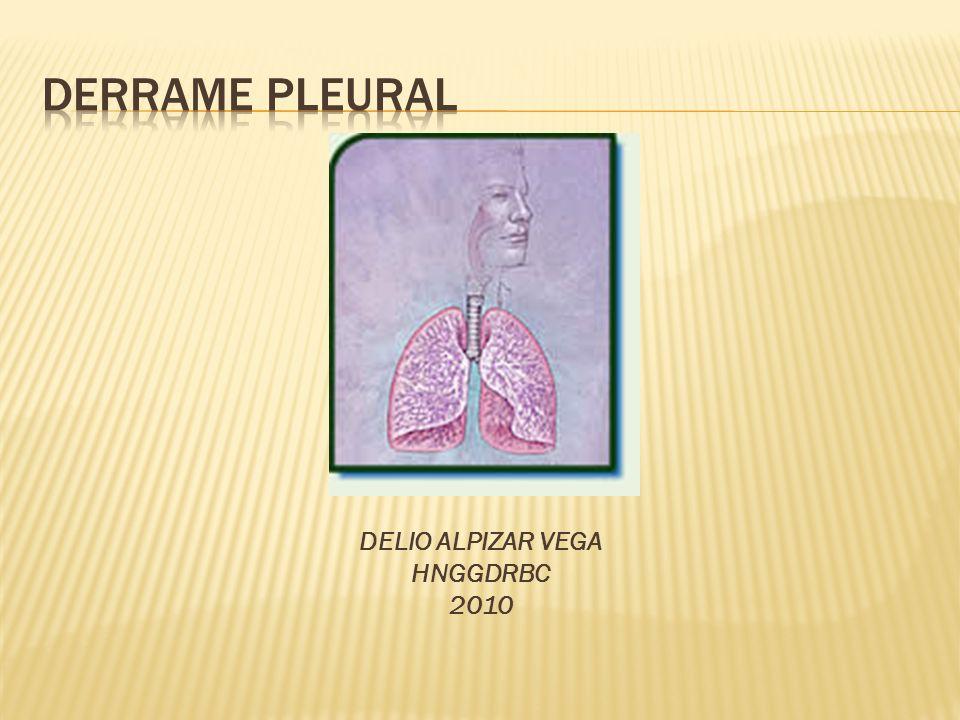DERRAME PLEURAL DELIO ALPIZAR VEGA HNGGDRBC 2010