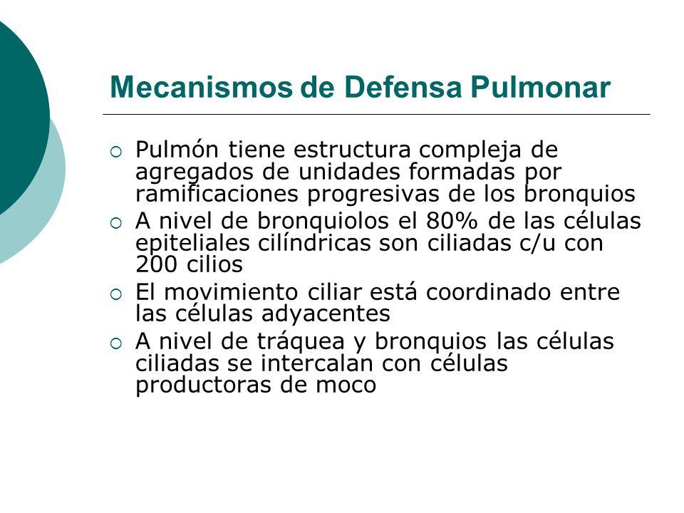 Mecanismos de Defensa Pulmonar