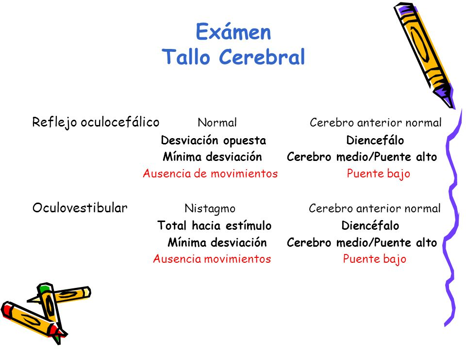Exámen Tallo Cerebral Reflejo oculocefálico Normal Cerebro anterior normal.