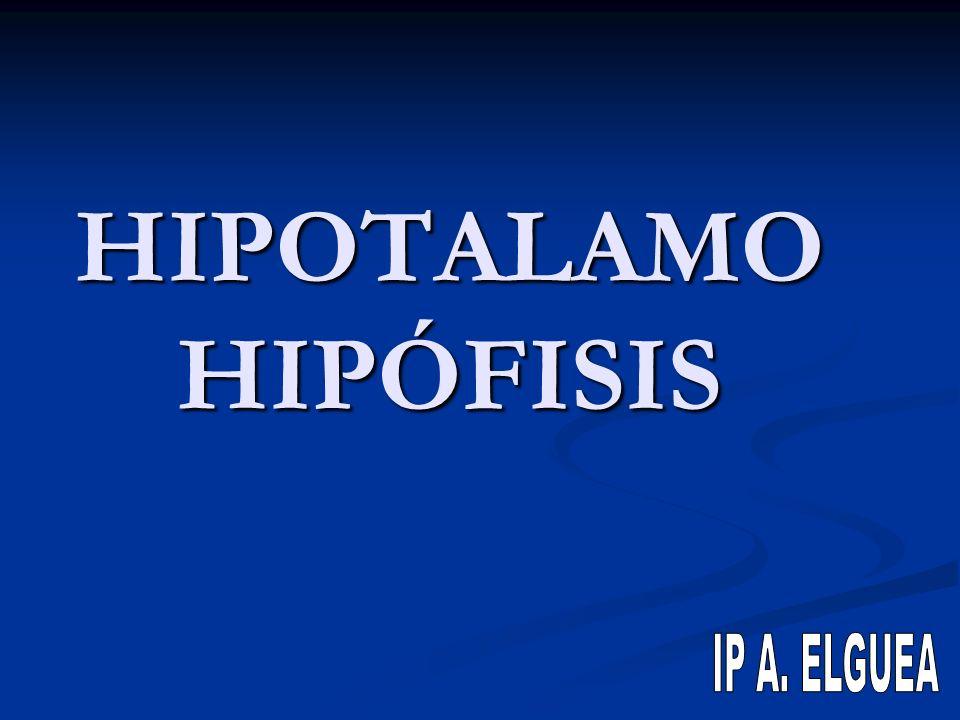 HIPOTALAMO HIPÓFISIS IP A. ELGUEA