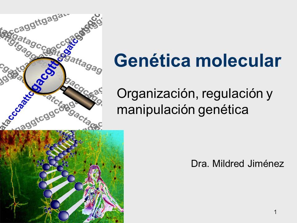 Organización, regulación y manipulación genética Dra. Mildred Jiménez