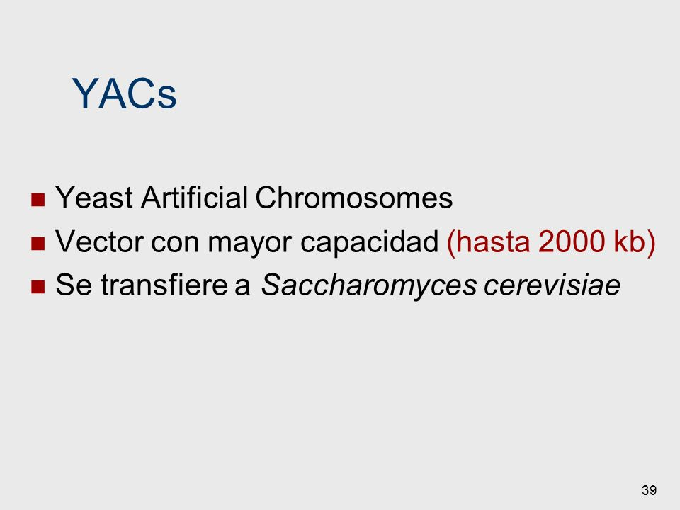 YACs Yeast Artificial Chromosomes