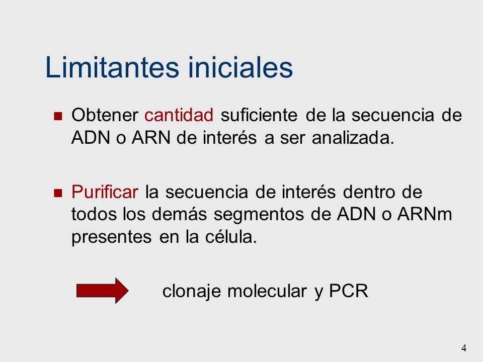Limitantes iniciales Obtener cantidad suficiente de la secuencia de ADN o ARN de interés a ser analizada.