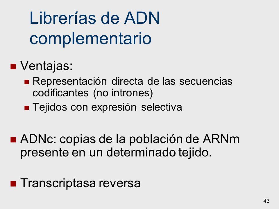 Librerías de ADN complementario