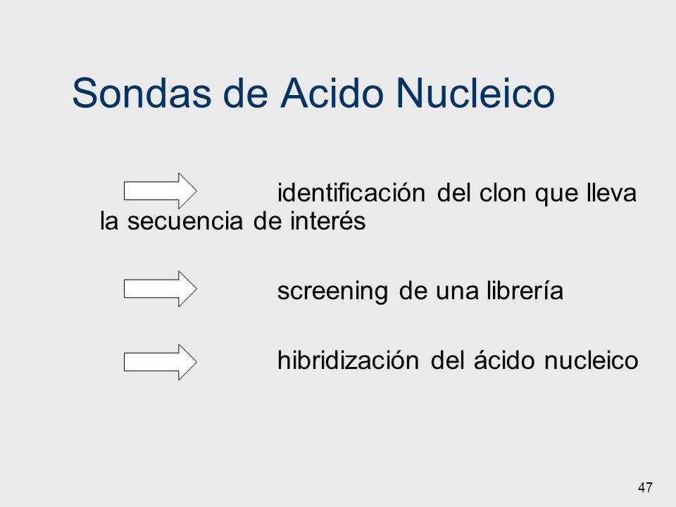 Sondas de Acido Nucleico