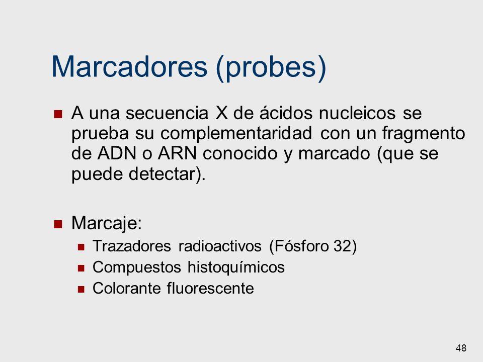 Marcadores (probes)