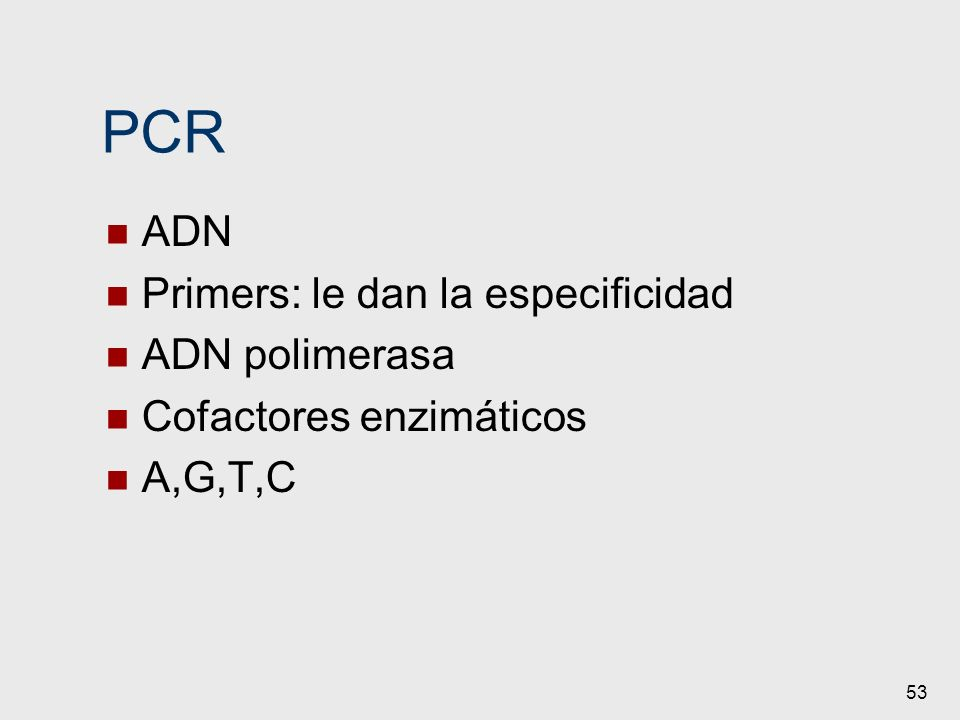 PCR ADN Primers: le dan la especificidad ADN polimerasa
