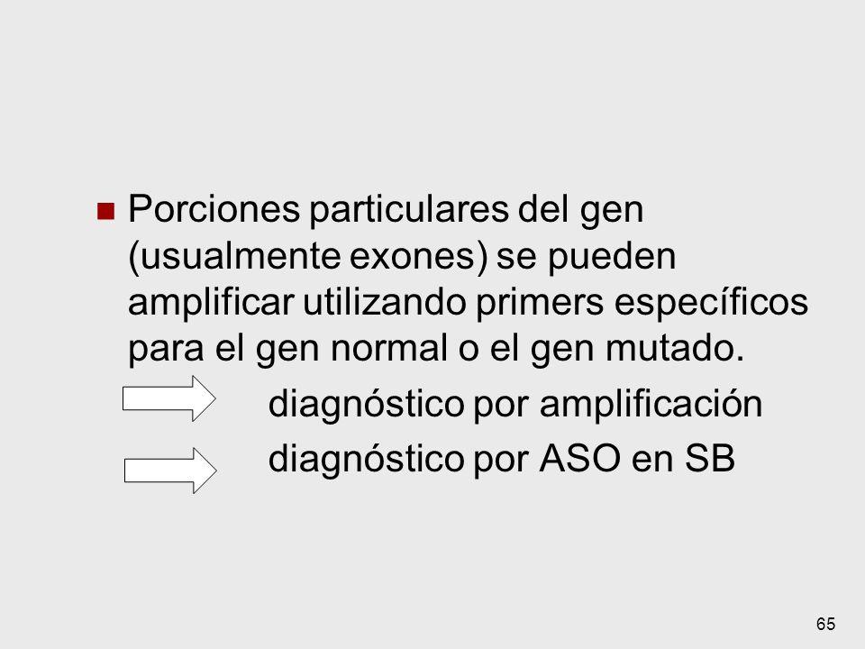 diagnóstico por amplificación diagnóstico por ASO en SB