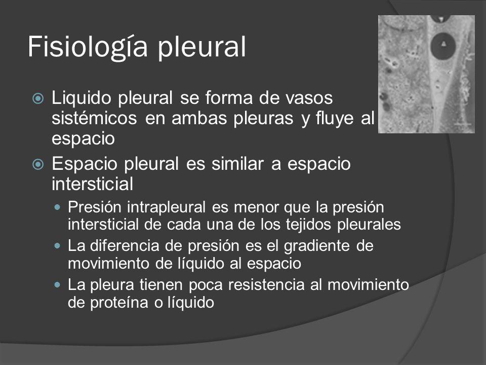 Fisiología pleural Liquido pleural se forma de vasos sistémicos en ambas pleuras y fluye al espacio.