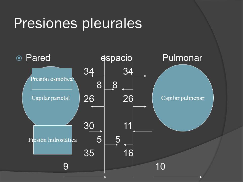 Presiones pleurales Pared espacio Pulmonar 34 34 8 8 26 26 30 11 5 5