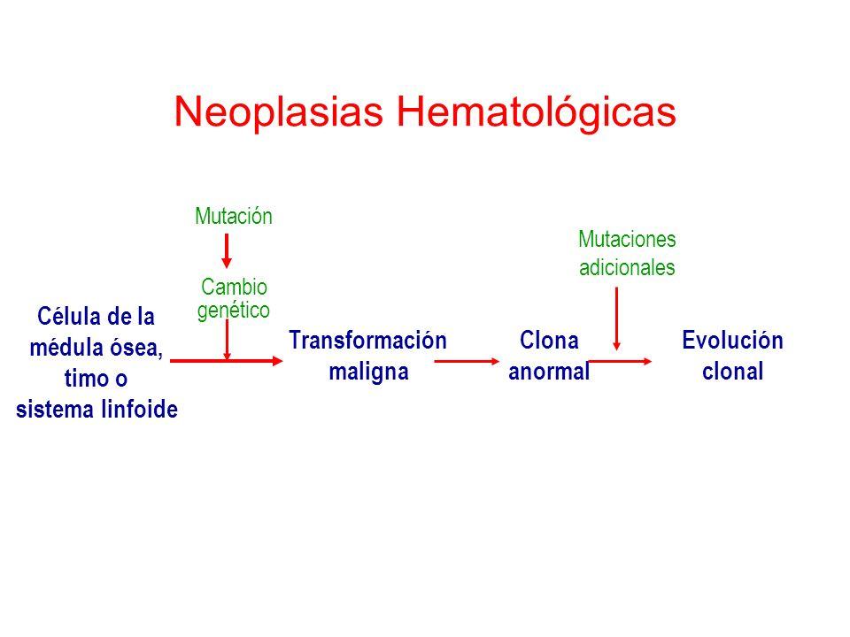 Neoplasias Hematológicas