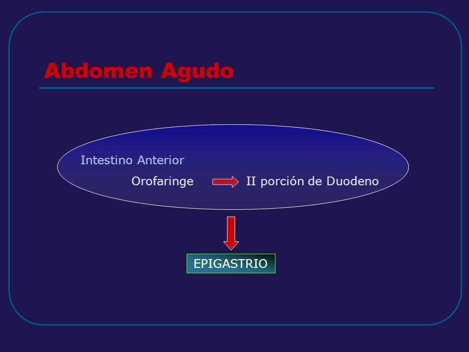 Abdomen Agudo Intestino Anterior Orofaringe II porción de Duodeno