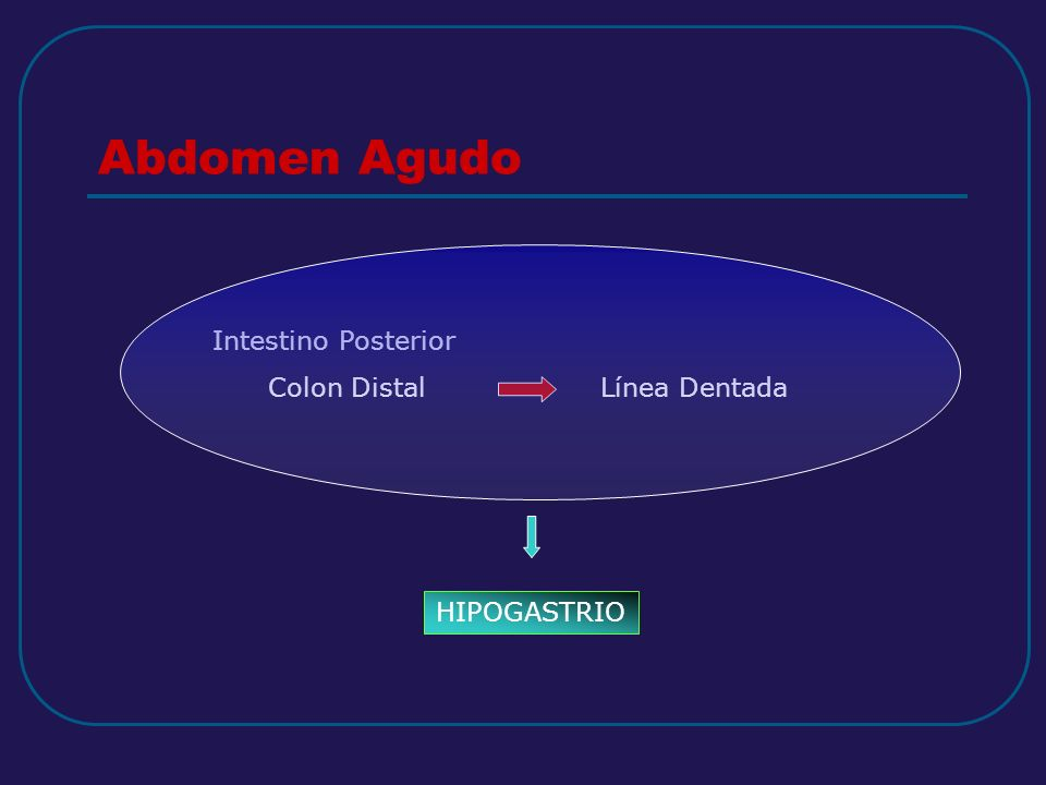 Abdomen Agudo Intestino Posterior Colon Distal Línea Dentada