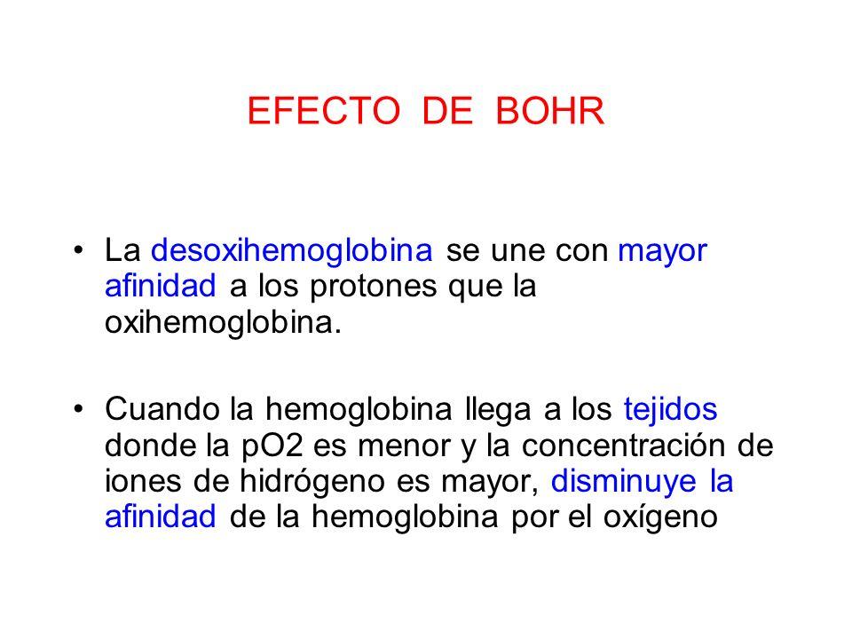 EFECTO DE BOHRLa desoxihemoglobina se une con mayor afinidad a los protones que la oxihemoglobina.