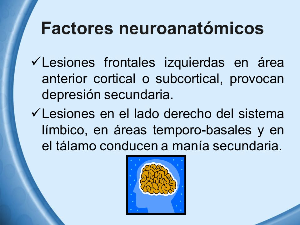 Factores neuroanatómicos