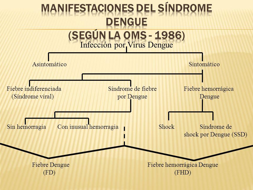 Manifestaciones del Síndrome Dengue (según la OMS - 1986)