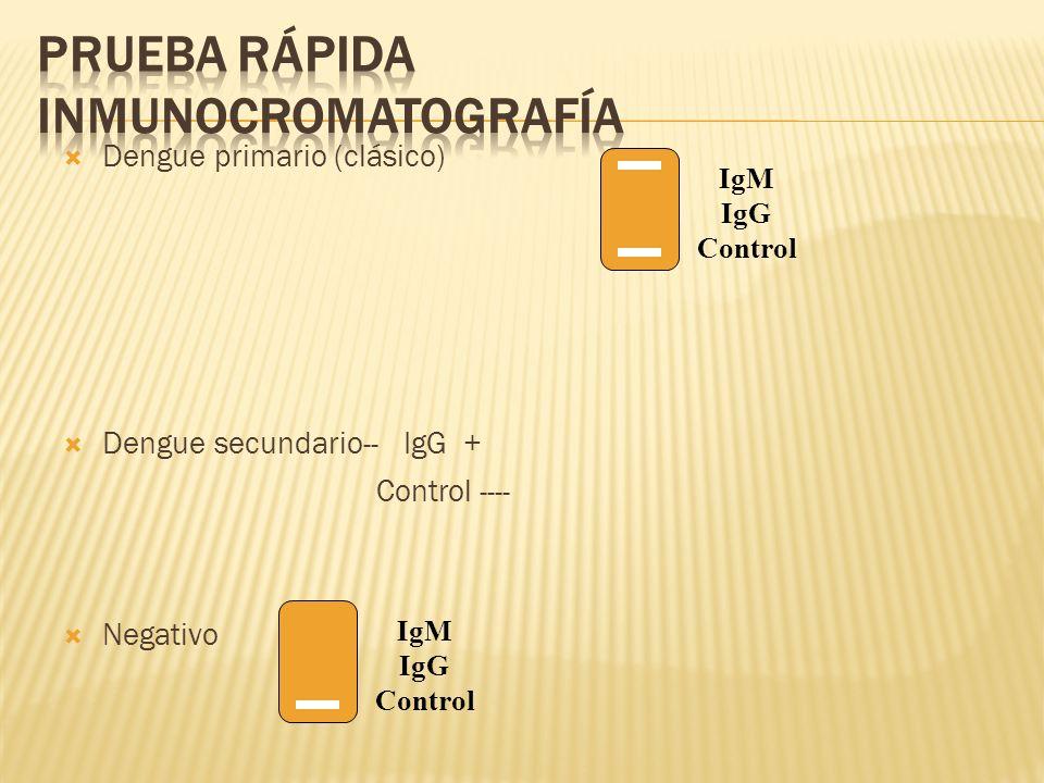 Prueba rápida inmunocromatografía