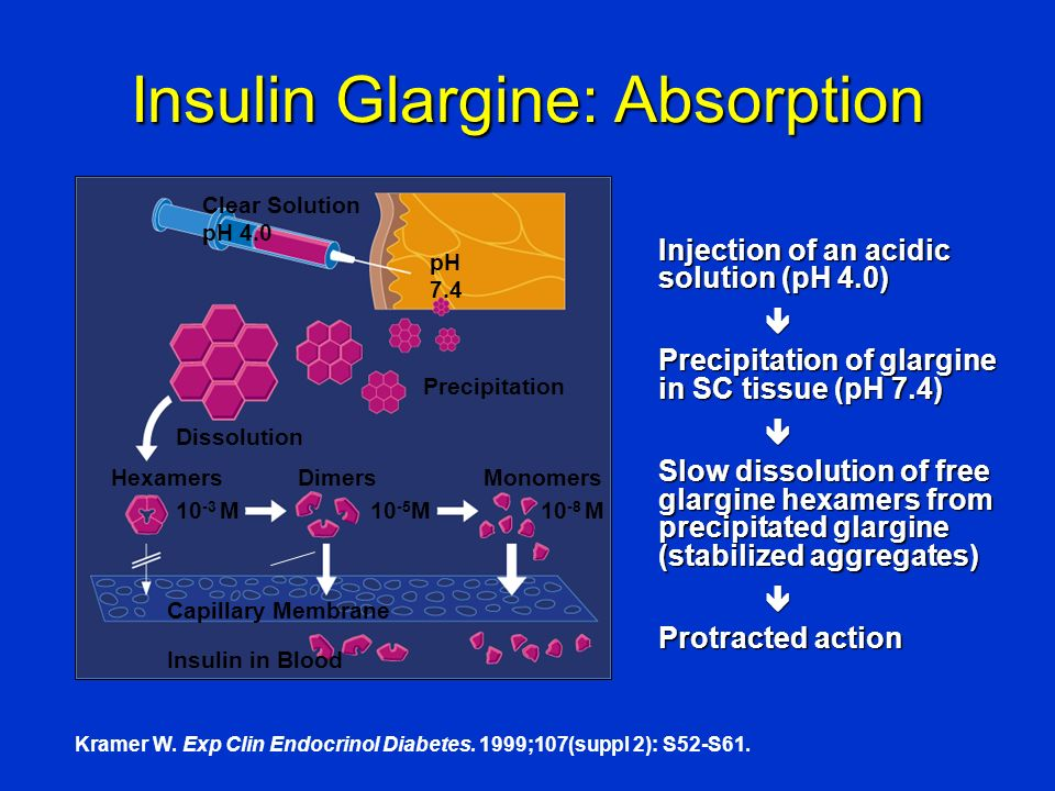 Insulin Glargine: Absorption