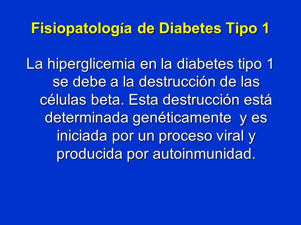 Fisiopatología de Diabetes Tipo 1