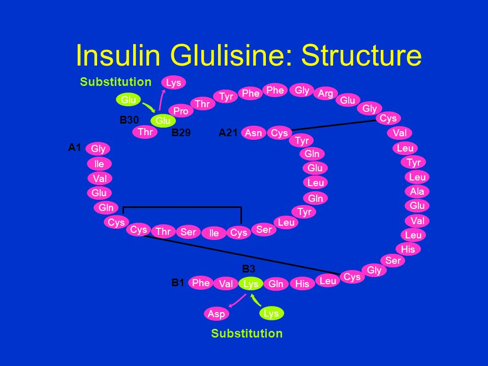 Insulin Glulisine: Structure