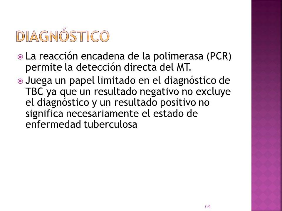 Diagnóstico La reacción encadena de la polimerasa (PCR) permite la detección directa del MT.