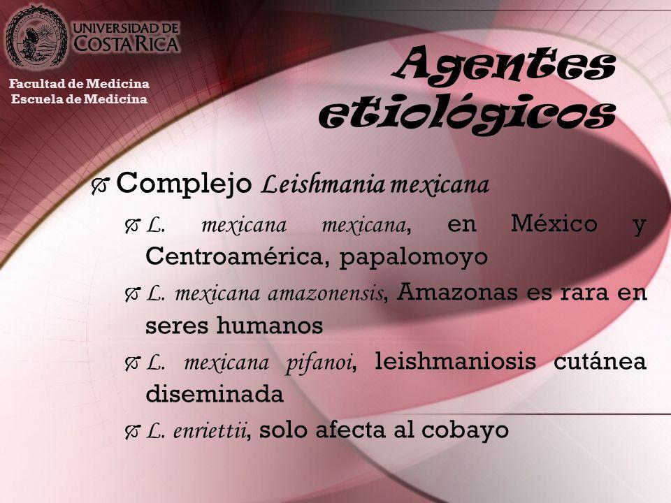Agentes etiológicos Complejo Leishmania mexicana