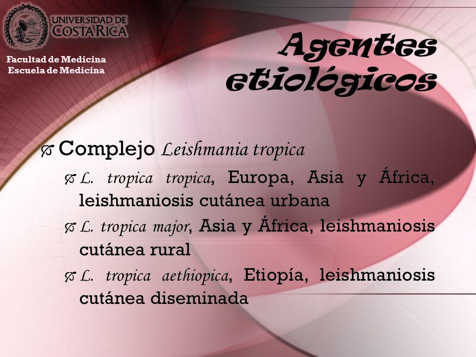 Agentes etiológicos Complejo Leishmania tropica