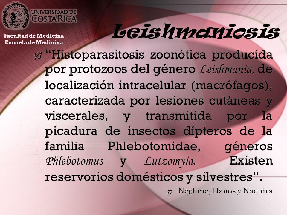 Leishmaniosis Facultad de Medicina. Escuela de Medicina.