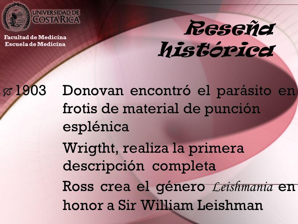Reseña histórica Facultad de Medicina. Escuela de Medicina. 1903 Donovan encontró el parásito en frotis de material de punción esplénica.