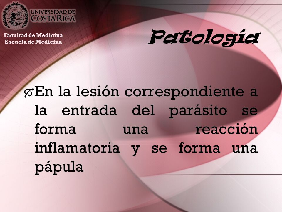 PatologíaFacultad de Medicina. Escuela de Medicina.