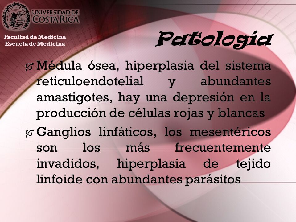 Patología Facultad de Medicina. Escuela de Medicina.