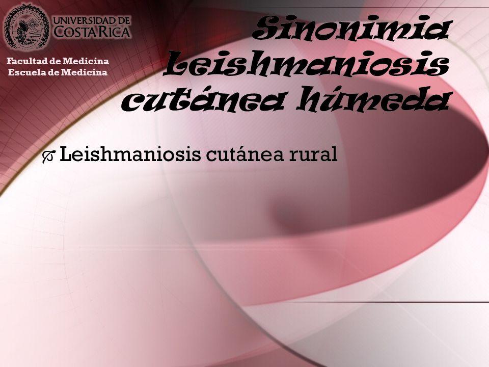 Sinonimia Leishmaniosis cutánea húmeda