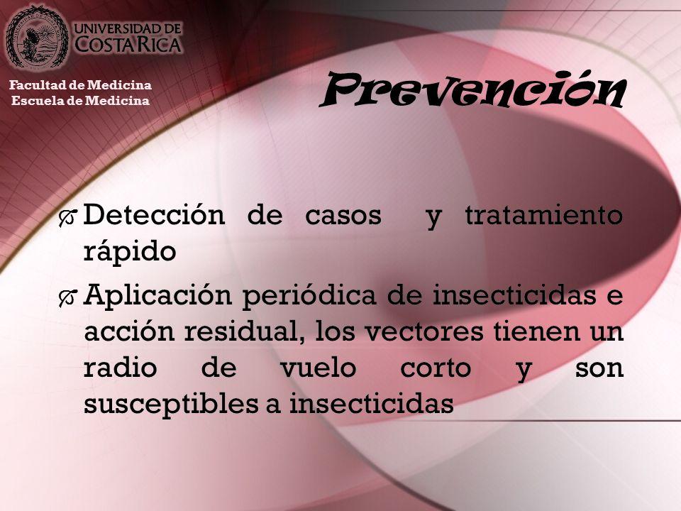 Prevención Detección de casos y tratamiento rápido