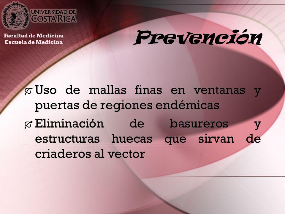 Prevención Facultad de Medicina. Escuela de Medicina. Uso de mallas finas en ventanas y puertas de regiones endémicas.
