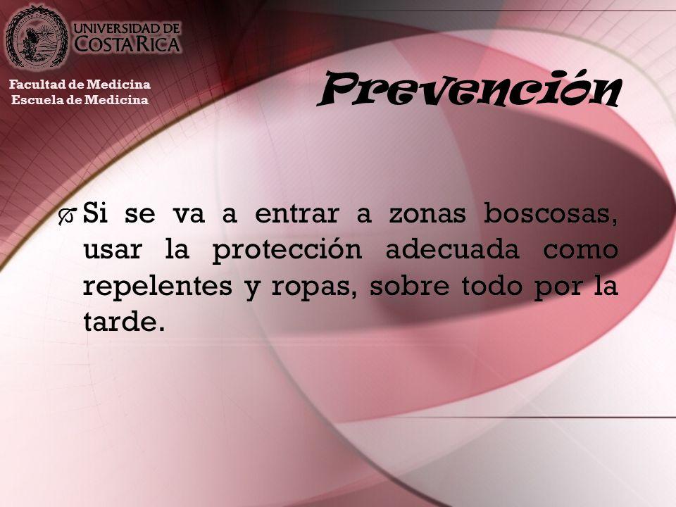 Prevención Facultad de Medicina. Escuela de Medicina.