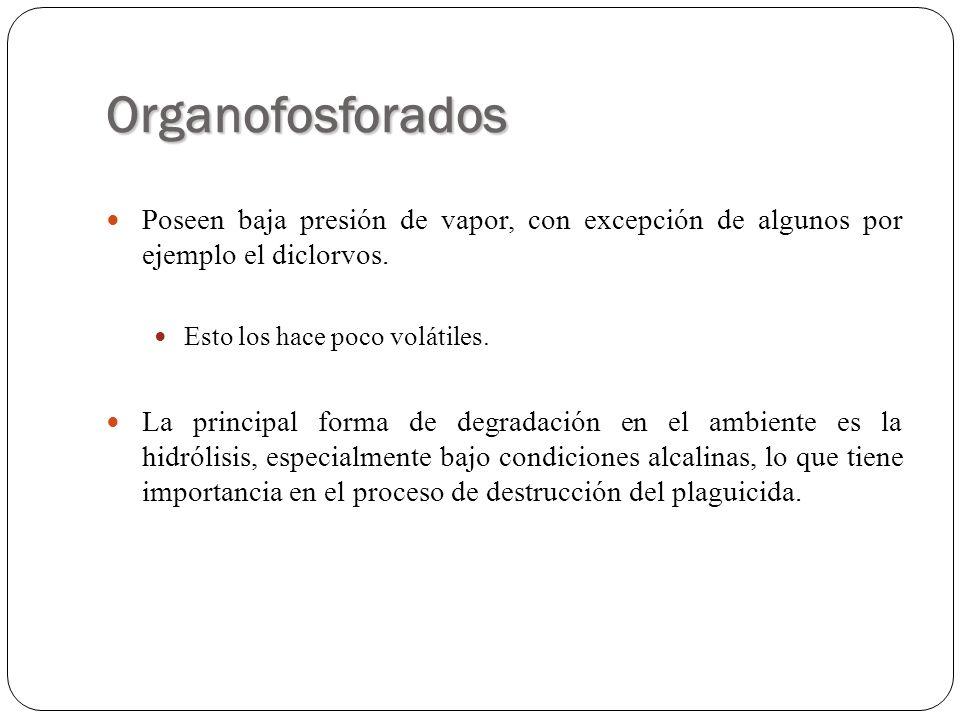 Organofosforados Poseen baja presión de vapor, con excepción de algunos por ejemplo el diclorvos. Esto los hace poco volátiles.