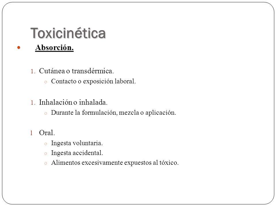 Toxicinética Absorción. Cutánea o transdérmica. Inhalación o inhalada.