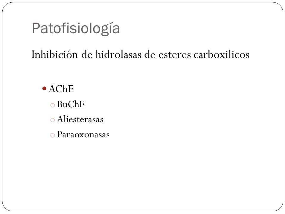 Patofisiología Inhibición de hidrolasas de esteres carboxilicos AChE