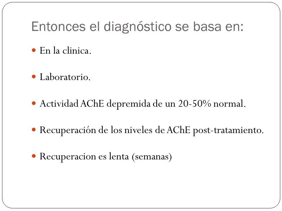 Entonces el diagnóstico se basa en: