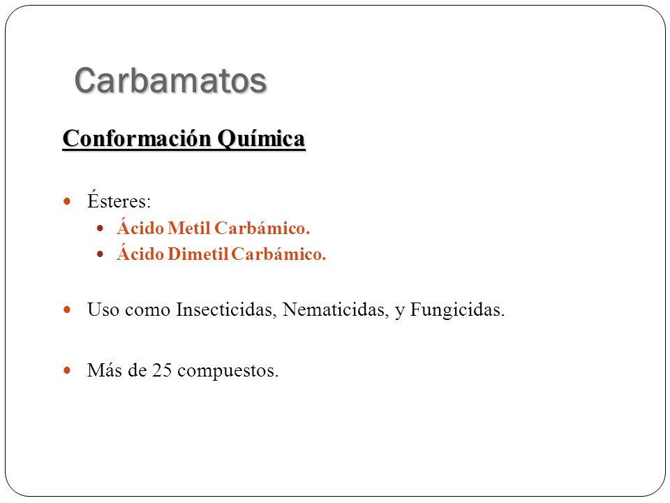 Carbamatos Conformación Química Ésteres: