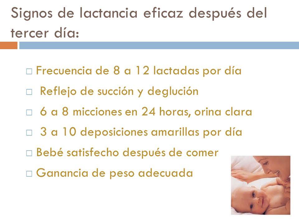 Signos de lactancia eficaz después del tercer día: