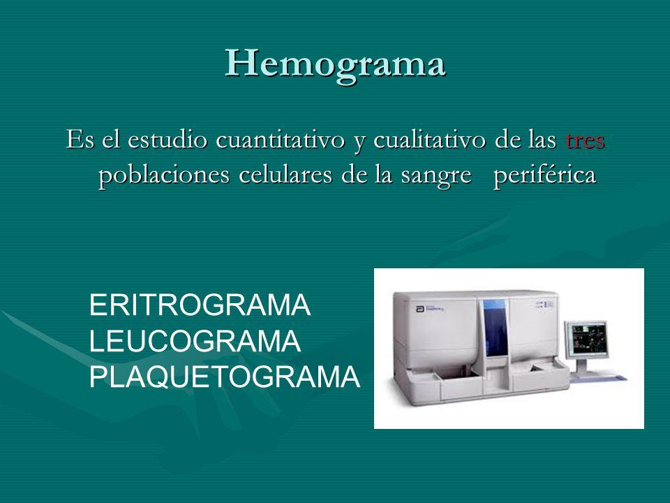 Hemograma ERITROGRAMA LEUCOGRAMA PLAQUETOGRAMA