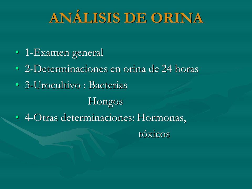 ANÁLISIS DE ORINA 1-Examen general